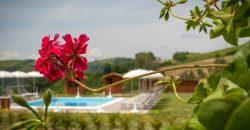 Vendesi agriturismo Modigliana zona panoramica
